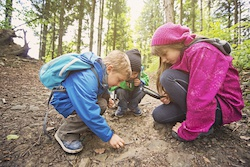 Introducing and Integrating a Nature Education Program